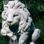 1560 Lew Mały z Tarczą