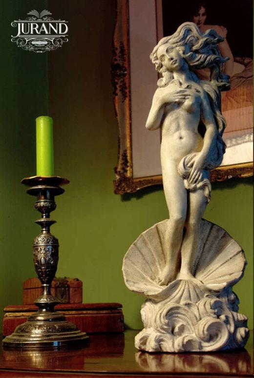 1607 Wenus w muszli malutka