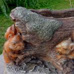 2019 Donica z wiewiórkami