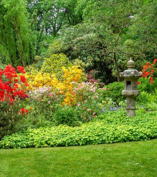 ogrod na wiosne