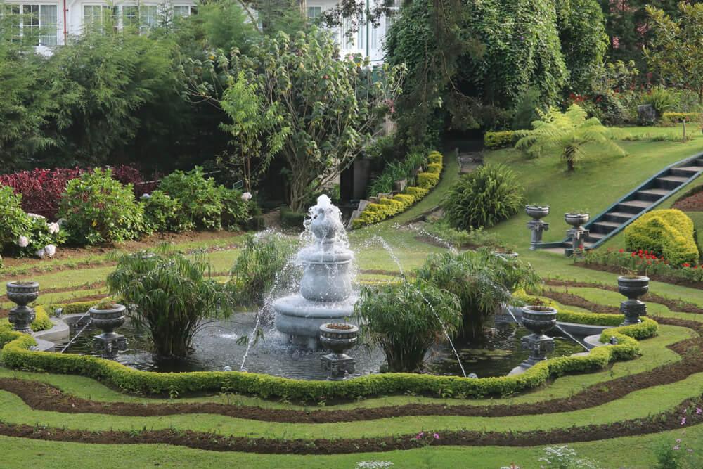 aranzacja fontanny ogrodowej