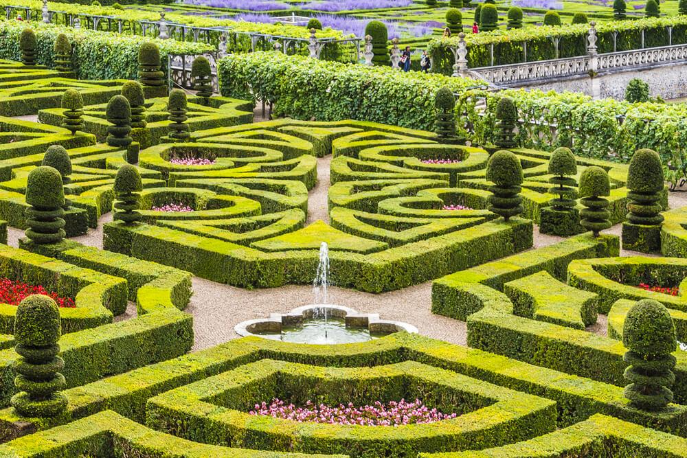 ogrod w stylu francuskim